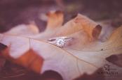 Fotografo di matrimonio a Firenze | Sonya Lalla Photography